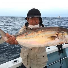 9月 29日(火) 午後・ウタセ真鯛の写真その1