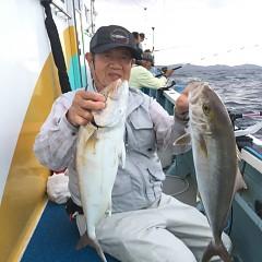 9月 29日(火) 午後・ウタセ真鯛の写真その7