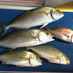 9月 29日(火) 午後・ウタセ真鯛の写真その9