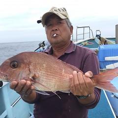 9月 30日(水) 午後便・ウタセ真鯛の写真その1