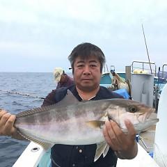 9月 30日(水) 午後便・ウタセ真鯛の写真その2