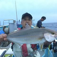 9月 30日(水) 午後便・ウタセ真鯛の写真その4