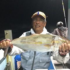 9月 30日(水) 午後便・ウタセ真鯛の写真その5