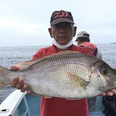 9月 30日(水) 午後便・ウタセ真鯛の写真その6