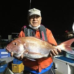 10月 13日(火) 午後便・ウタセ真鯛の写真その1
