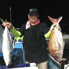 10月 13日(火) 午後便・ウタセ真鯛の写真その4