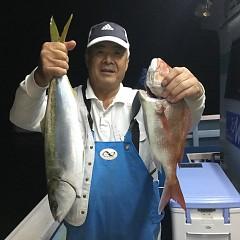 10月 13日(火) 午後便・ウタセ真鯛の写真その5