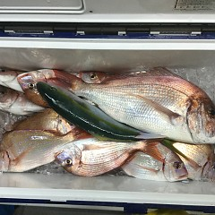 10月 15日(木) 午前・午後・ウタセ真鯛の写真その3