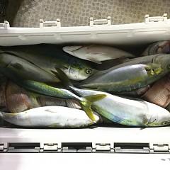 10月 15日(木) 午前・午後・ウタセ真鯛の写真その5