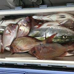 10月 15日(木) 午前・午後・ウタセ真鯛の写真その9