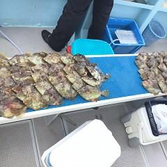 10月 18日(日) 午前便・カワハギ釣りの写真その5