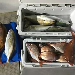 10月 18日(日) 午後・ウタセ真鯛の写真その6