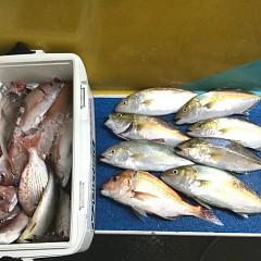 10月 18日(日) 午後・ウタセ真鯛の写真その7