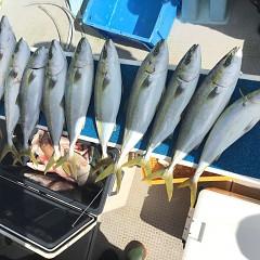 10月 24日(土) 午前便・ウタセ真鯛の写真その6