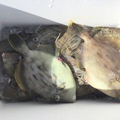 10月 26日(月) 午前便・カワハギ釣りの写真その5