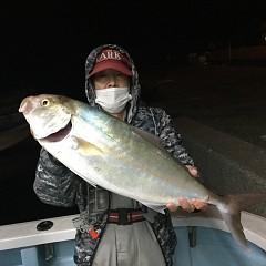 10月 29日(木) 午後便・ウタセ真鯛の写真その1