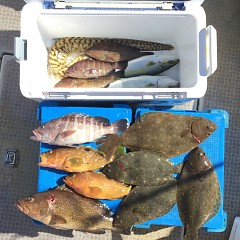 10月 31日(土) 午前便・ヒラメ釣りの写真その5