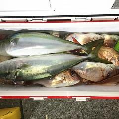 10月 31日(土) 午後便・ウタセ真鯛の写真その5