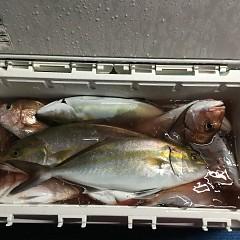 11月2日(月)午後便・ウタセマダイ釣りの写真その1