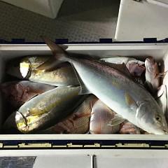 11月2日(月)午後便・ウタセマダイ釣りの写真その5