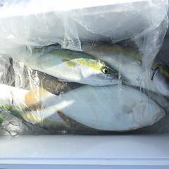 11月 11日(水)午前・午後・ヒラメ釣りの写真その7