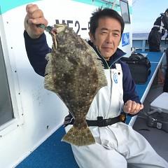 11月 13日(金) 午前・午後・ヒラメ釣りの写真その4