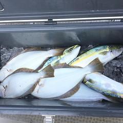 11月 16日(月) 午前・午後・ヒラメ釣りの写真その10
