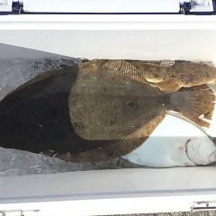 11月 21日(土) 午前便・ヒラメ釣りの写真その8