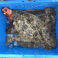11月 23日(月) 午前便・ヒラメ釣りの写真その9