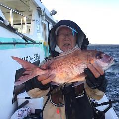 11月 23日(月) 午後・ウタセ真鯛の写真その1