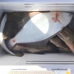 11月26日(木)午前便・ヒラメ釣りの写真その8