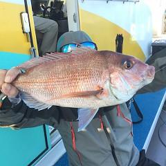 11月 27日(金) 午前・ヒラメ釣り 午後・ウタセ真鯛の写真その10