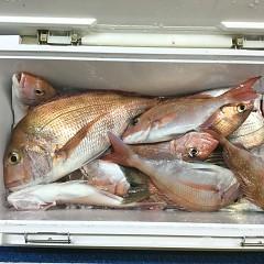 11月 27日(金) 午前・ヒラメ釣り 午後・ウタセ真鯛の写真その11
