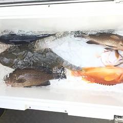 11月 29日(日) 午前・ヒラメ釣りの写真その8