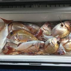11月 29日(日) 午後・ウタセ真鯛の写真その2