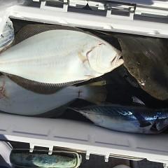 12月10日(木)午前・午後便・ヒラメ釣りの写真その8