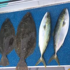 12月29日(火)午前便・午前便・イワシの泳がせ釣りの写真その11