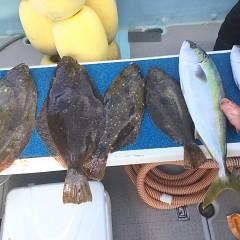 12月 30日(水) 午前便・イワシの泳がせ釣りの写真その3