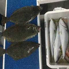 1月 9日(土) 午後・イワシの泳がせ釣りの写真その9