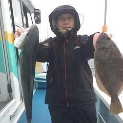 1月 12日(火) 1日便・イワシの泳がせ釣りの写真その3