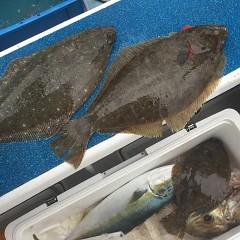 1月 12日(火) 1日便・イワシの泳がせ釣りの写真その9