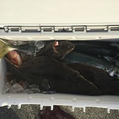 1月15日(金)イワシの泳がせ釣り1日便の写真その8