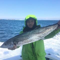 1月 25日(月) 午前便・イワシの泳がせ釣りの写真その3