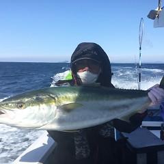 1月 25日(月) 午前便・イワシの泳がせ釣りの写真その4