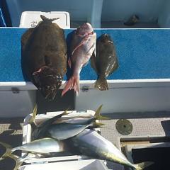 1月 25日(月) 午前便・イワシの泳がせ釣りの写真その10