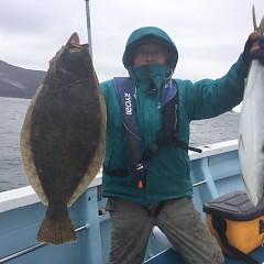 1月 28日(木) 1日便・イワシの泳がせ釣りの写真その2