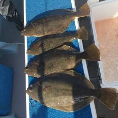 1月 29日(金) 1日便・イワシの泳がせ釣りの写真その6