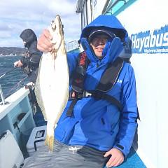 1月 30日(土) 午前便・イワシの泳がせ釣りの写真その5