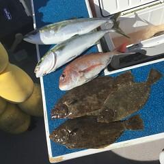 1月 30日(土) 午前便・イワシの泳がせ釣りの写真その9