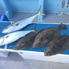 1月 30日(土) 午前便・イワシの泳がせ釣りの写真その10